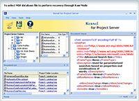 Project Server Repair screenshot