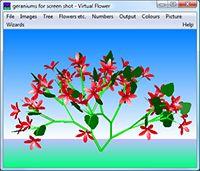Virtual Flower screenshot
