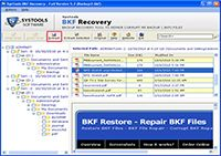Complete BKF Recovery screenshot