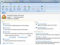 FireBird Data Wizard screenshot