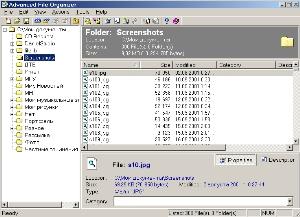Advanced File Organizer  screenshot