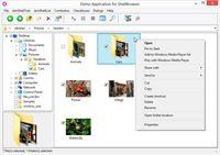 ShellBrowser Components Delphi Edition screenshot