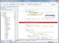 Rapid PHP 2014 screenshot