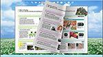 Free PDF brochure converter