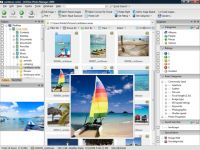 ACDSee Photo Manager 2009