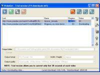 Tube8 video downloader