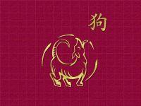Chinese Zodiac Free Screensaver