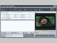Simple DVD Ripper