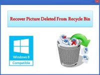 Recover Picture Deleted From Recycle Bin