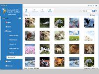 4Videosoft iOS Transfer for Mac